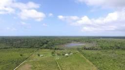 Fazenda no Pará,em Curuça com 80 hectares documentada