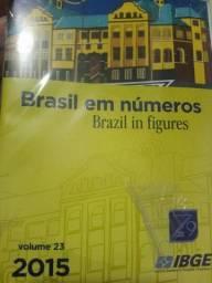 Brasil em Números - Brazil in figures (Livro Novo)