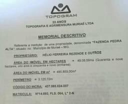 Propriedade no Pico Itajuru Muriaé-MG