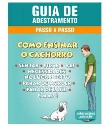 Como adestrar seu cachorro