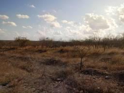 Terreno em Gurjão