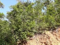 Terreno à venda em Bacalhau, Piranga cod:9437