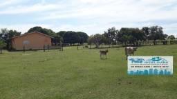 Fazenda somente para Pecuária com 355 hectares