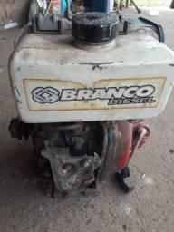 Motor funcionando diesel.ideal para hortalicas