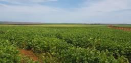 Fazenda em Campo Verde-MT