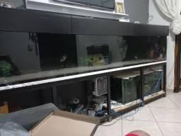 Aquario 3 metro