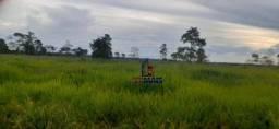 Sítio à venda, por R$ 2.530.000 - Área Rural - Alto Paraíso/RO