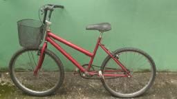 Bicicleta adulto (Pindamonhangaba Moreira)