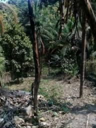 Vendo terreno com casa, com Igarapé