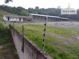 Área para alugar, 10000 m² por r$ 15.000,00/mês - parque são fernão - mairiporã/sp