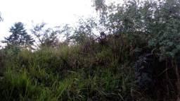 Título do anúncio: Loteamento/condomínio à venda em Joaquim murtinho, Congonhas cod:11996