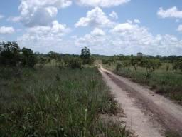 Sítio 60 hectares excelente oportunidade´frente pra Br 156 no km 325 _ ferreira gomes
