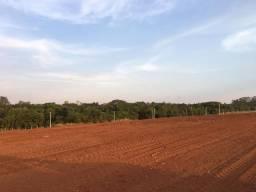 Terrenos batatais