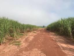 Fazenda de cana | 32 Alqueires | região Acreúna | Oportunidade
