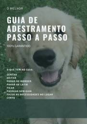 GUIA DE ADESTRAMENTO PARA CÃES PASSO A PASSO