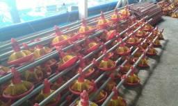 Equipamentos para aviários