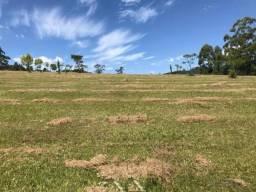 Terreno à venda em Lomba grande, Novo hamburgo cod:10810