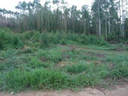 Terreno à venda em Zona rural, Senhora de oliveira cod:6718