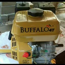 Buffalo 4T - Motor com rabeta