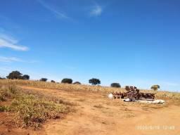 Fazenda em Caldas Novas - GO. 924,44 Hectares