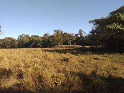 Excelente chácara à 10 km de Paraíso Do Tocantins  na beira do rio do coco