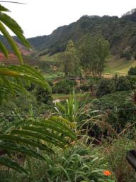 Fazenda 29.9 alqueires santa Leopoldina es