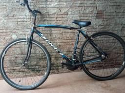 Bicicleta aro 29 com documento