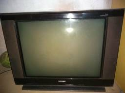 """TV SEMP Slim 29"""""""