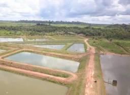 Fazenda com 2771 hectares Rio Crespo em Rondônia