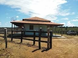 Fazenda de Gado em Formosa do Rio Preto. Excelente.