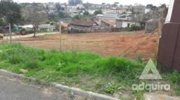 Terreno em rua - Bairro Uvaranas em Ponta Grossa