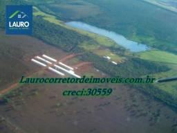 Fazenda Bom Despacho com 1.200 hectares