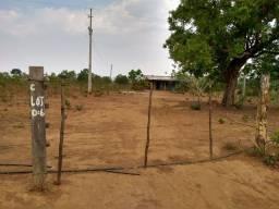 Vendo 55 hectares