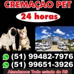 Título do anúncio: Cremação de animais 24 horas *