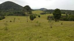 Fazenda de 480 hectares em Guaratinga