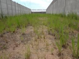 Terreno 1.000 m² de área (ideal para estacionamento/Garagem)