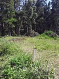 Terreno no bairro Vista Alegre (Lages - SC)