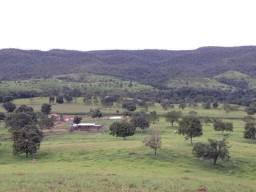 Fazenda 10 alqueires pra pecuária em Caldas Novas