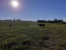 Chácara à venda em Zona rural, Santa maria cod:14096