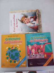 Livros paradidáticos seminovos
