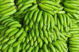 Banana sem agrotóxico