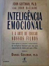 Inteligência Emocional e a arte de educar nossos filhos