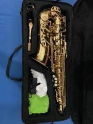 Sax alto vogga vsas701, aceito troca