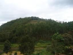 Terreno à venda em Queimada, Piranga cod:7029