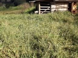Terreno à venda em Zona rural, Rio espera cod:11528