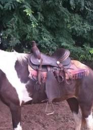 Sela para cavalo
