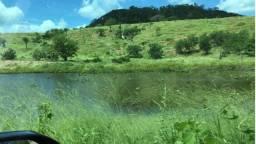 Fazenda com pastagem para gado de corte, 653 hectares (1.500 tarefas) em Ibiquera