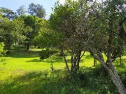 Chácara 2 hectares c/ escritura Barbada!