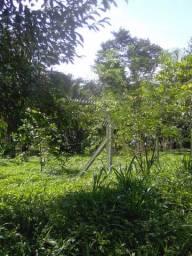 Sitio 50x145m, localização Paraupebas-PA.