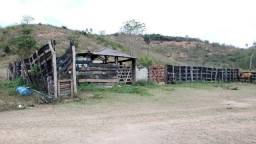 Fazenda 22 Alqueires, próximo de Governador Valadares / MG